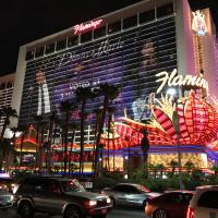 Vegas Flamingo Sorel Tracy et cie