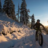 fat bike continental